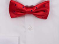 6 примерни комбинации как да съчетаем цвета на ризата и папийонката